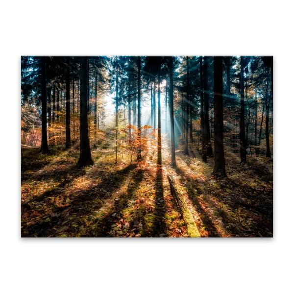 Obraz Styler Glasspik Autumn Sunset, 70 x 100 cm