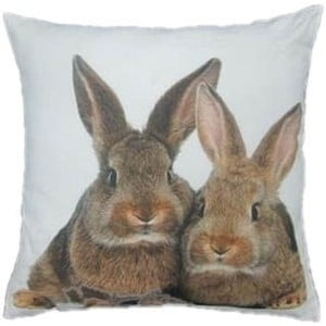 Polštář Two Brown Rabbits 50x50 cm