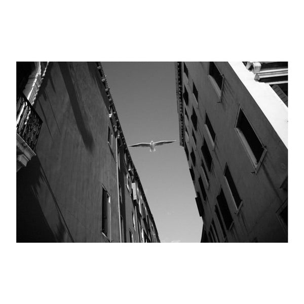Fotografie Benátky, limitovaná edice fotografa Petra Hricka, formát A1