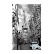Fotoobraz Eiffel Tower, 81x51 cm