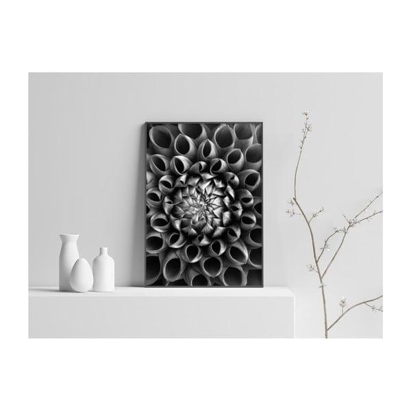 Plakát Imagioo Flower Close Up, 40x30cm