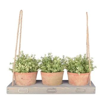 Raft pentru flori cu agățătoare Ego Dekor, lățime 53,3 cm de la Ego Dekor
