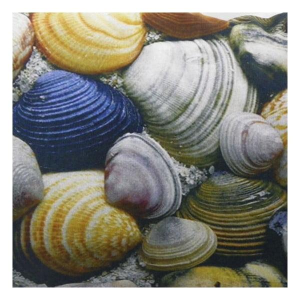Polštář Shell, 60x40 cm