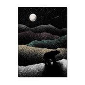 Plakát Wandering Bear od Florenta Bodart, 30x42 cm