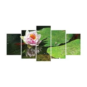 Vícedílný obraz La Maison Des Couleurs Waterlily