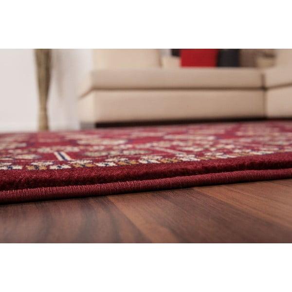 Koberec Salta Red, 80x150 cm