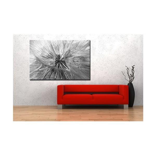 Fotoobraz Chmýří, 90x60 cm