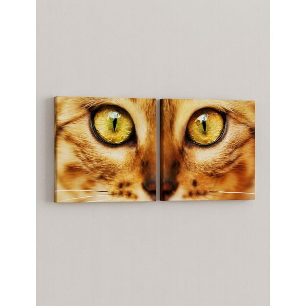 Sada 2 obrazů Oči kočičí