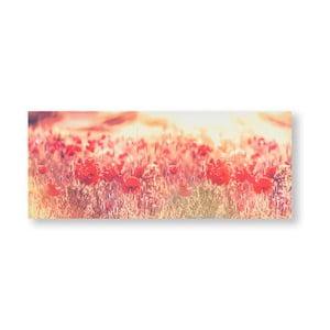 Obraz Graham & Brown Peaceful Poppy Fields, 100 x 40 cm
