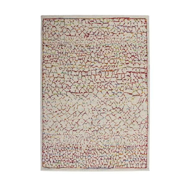 Koberec Desire Multi 120x170 cm, barevný