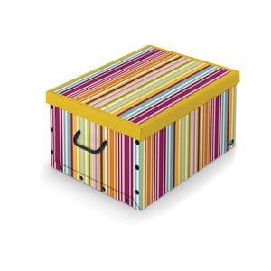 Barevný úložný box Domopak