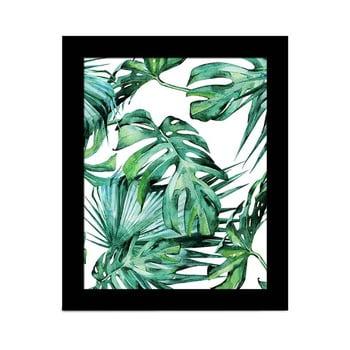 Tablou Alpyros Jungle, 23 x 28 cm de la Unknown