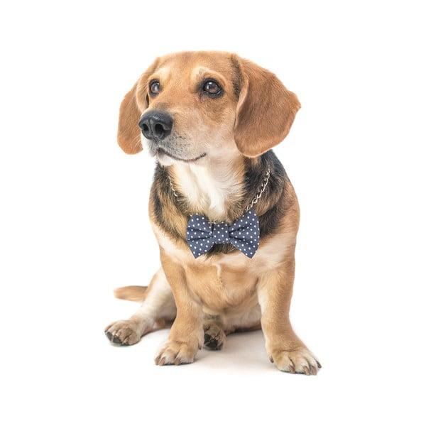 Šedý charitativní psí motýlek s puntíky Funky Dog Bow Ties, vel. L