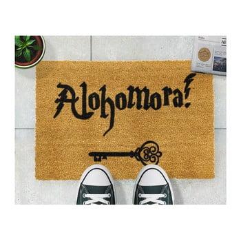 Covoraș intrare din fibre de cocos Artsy Doormats Alohomora 40 x 60 cm