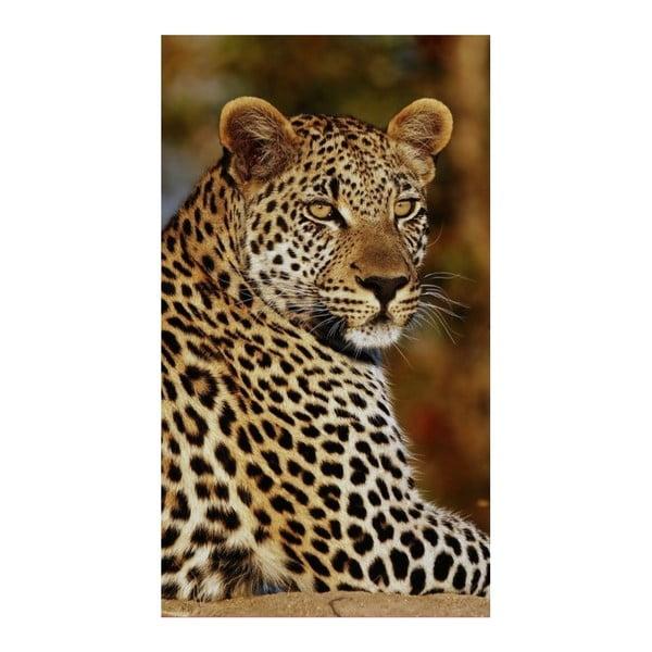 Prosop de plajă cu imprimeu Good Morning Leopard, 100x180cm
