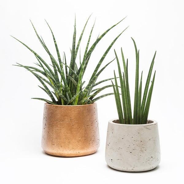 Set kamených květináčů Urban Botanist Planter Duo