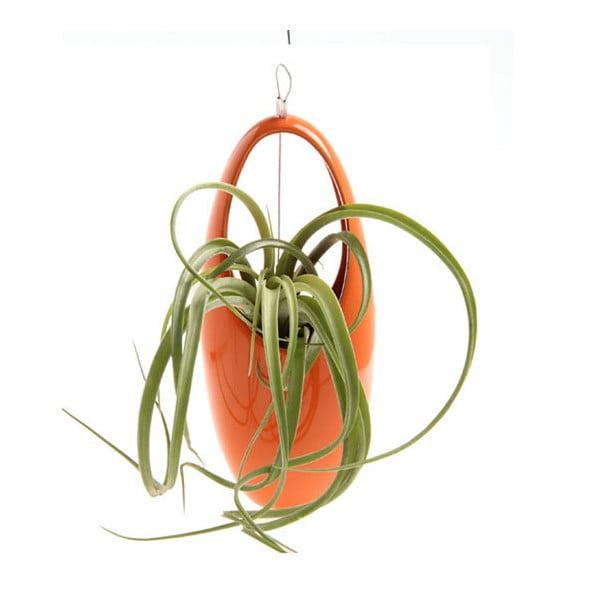 Závěsná váza, egg orange