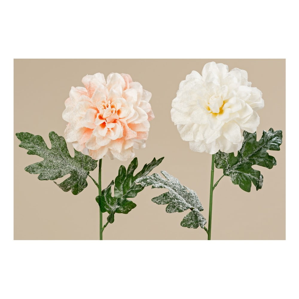 Sada 2 dekorativních květin Boltze Dahlia