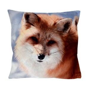 Polštář Animals Fox, 42x42 cm