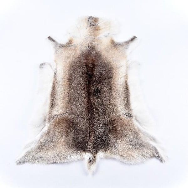 Sobí kožešina Reindeer, 100x60 cm