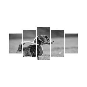 Vícedílný obraz Black&White no. 101, 100x50 cm