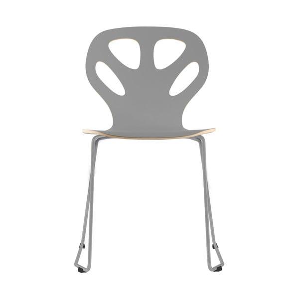 Židle Maple, šedá