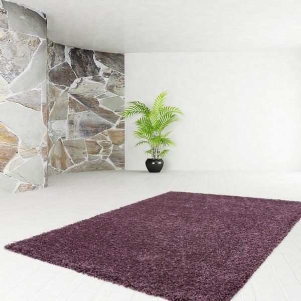 Koberec Solar Violet, 150x220 cm