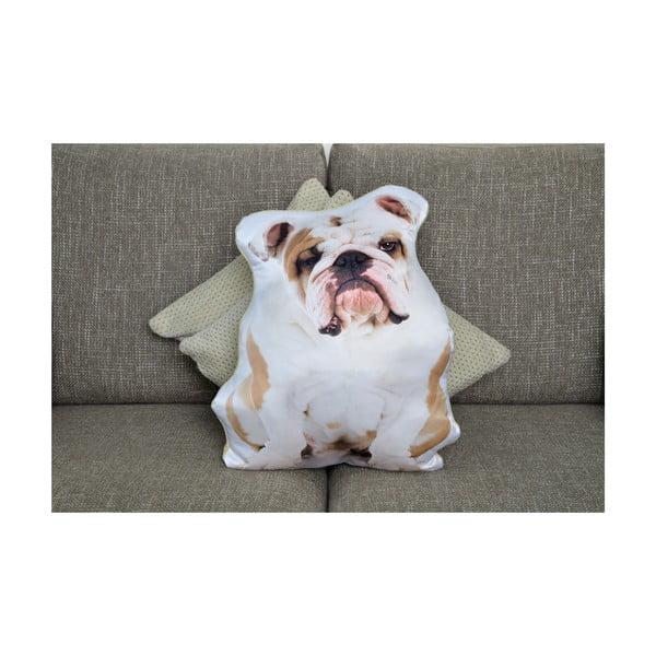 Polštářek Adorable Cushions Buldok
