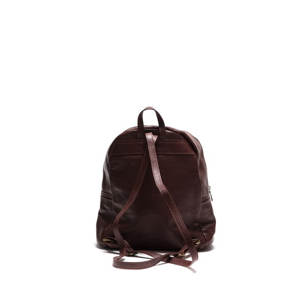 Kožený batoh Anna Luchini 2122 Marrone