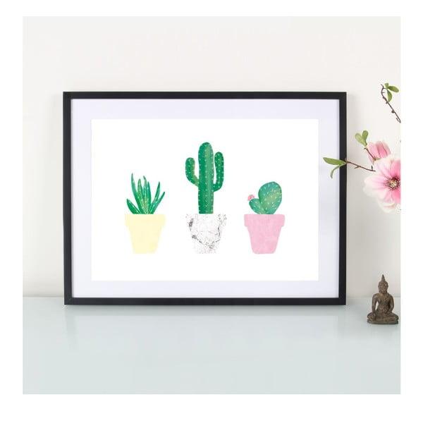 Plakát Kaktusliebe, A3