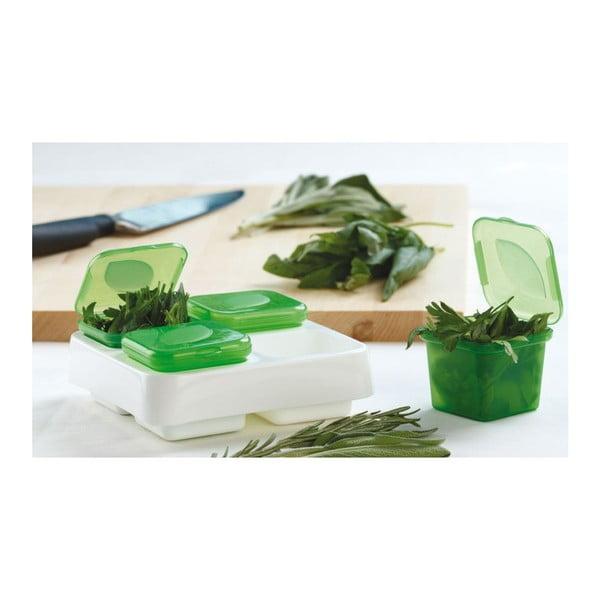 Box na bylinky Frozen Herb