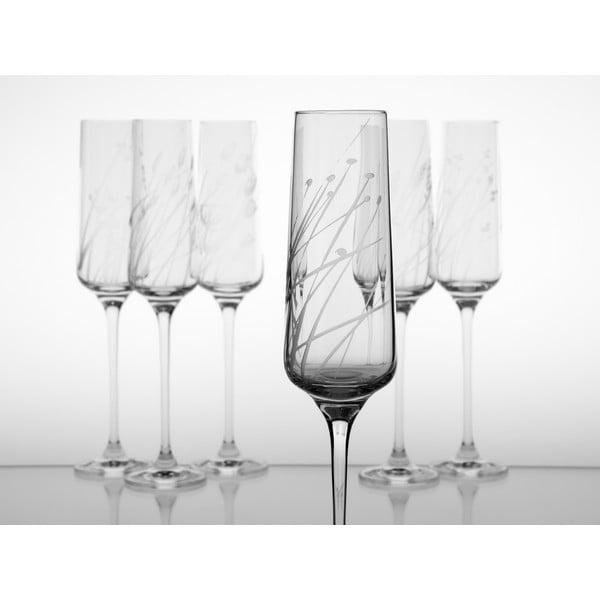 Ateliér Žampach, set 6 ks skleniček na šampaňské Traviny nahoru