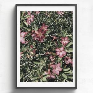 Obraz v dřevěném rámu HF Living Maceo, 50 x 70 cm