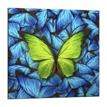 Tablou Styler Glasspik Blue Butterfly, 20 x 20 cm imagine