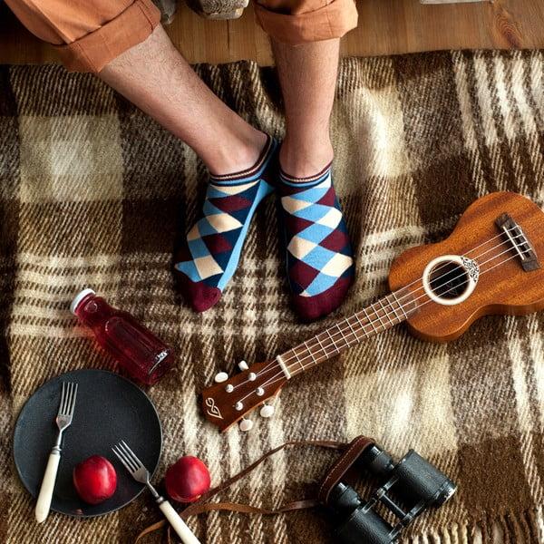 Ponožky Creative Gifts Archimede, nízké