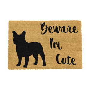 Rohožka Artsy Doormats Cute French, 40 x 60 cm