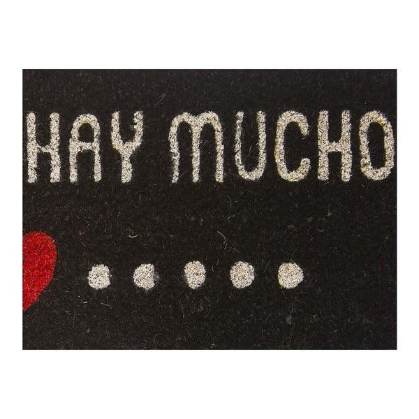 Rohožka z kokosových vláken Amor Blanco, 40x70 cm