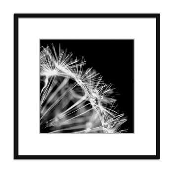 Tablou Styler Artbox Dandelion, 50 x 50 cm
