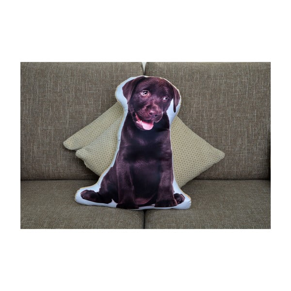 Polštářek Adorable Cushions Čokoládový labrador