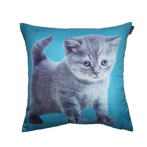 Povlak na polštář Cute Kitty, 45x45 cm