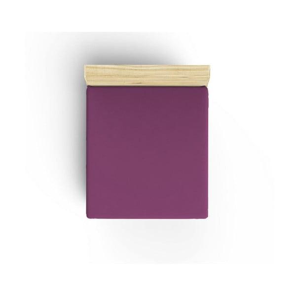 Fioletowe nieelastyczne bawełniane prześcieradło jednoosobowe Caresso, 90x190 cm