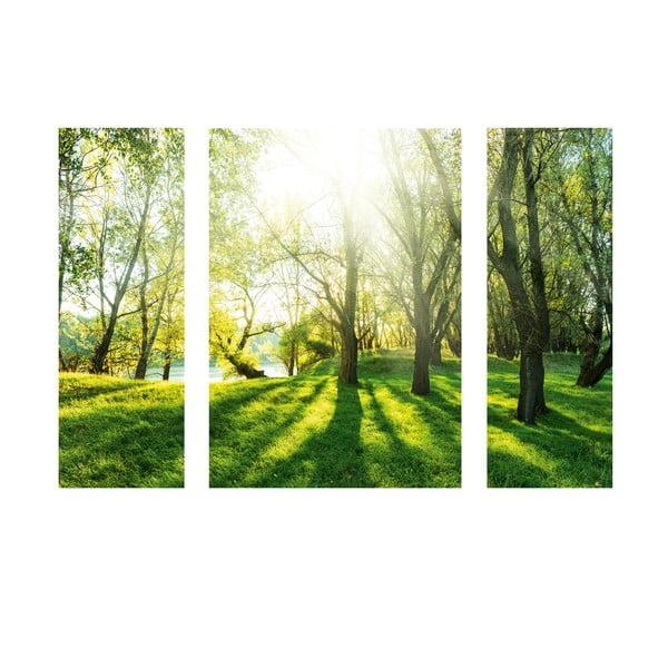 Samolepící obraz Summer Forest
