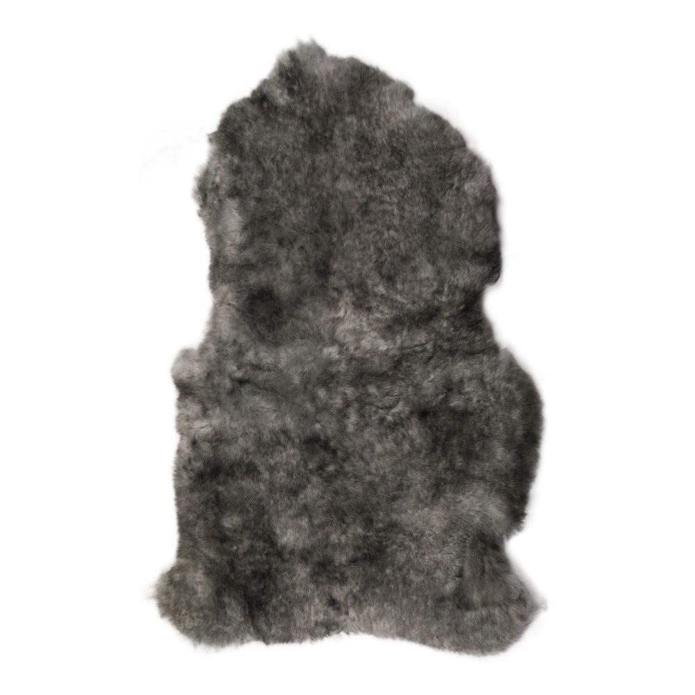 Šedá ovčí kožešina s krátkým chlupem Dark tops, 90 x 60 cm