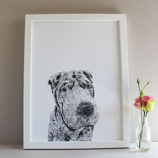 Plakát Henry the Sharpei, 30x40 cm