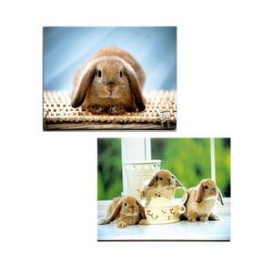 Set 2 dřevěných obrazů Rabbit, 30x40 cm