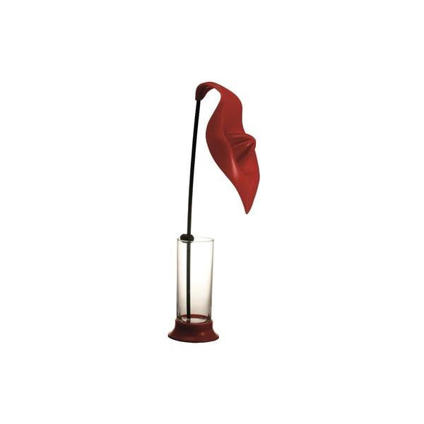 Odšťavňovač se sklenicí Anthurium Red