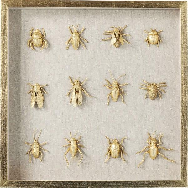 Nástěnný obraz sbírka brouků Kare Design