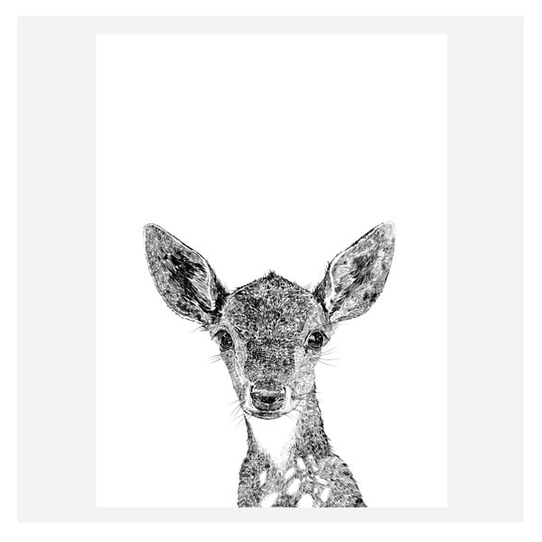 Plakát Darcy The Deer, 30x40 cm