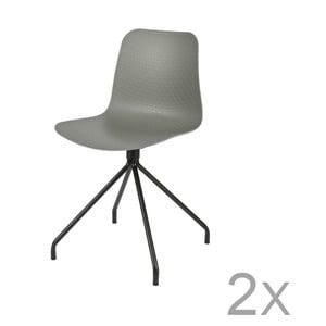 Sada 2 šedých židlí De Eekhoorn Sis