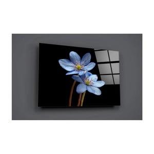 Skleněný obraz Insigne Harunego, 72 x 46 cm